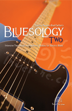 Intensive theoretical and harmonic studies for electric blues