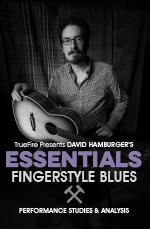 Essential Fingerstyle Blues Performance Studies & Analysis